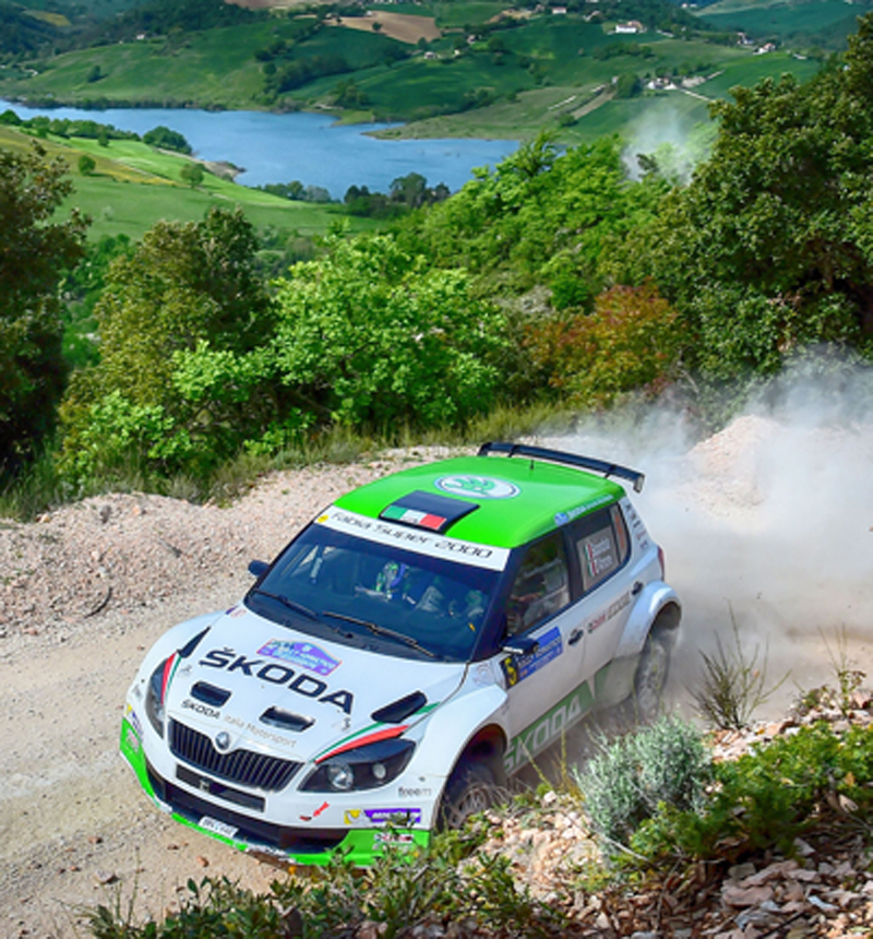 Umberto Scandola, Guido Damore (Skoda Fabia S2000 #5, Car Racing)